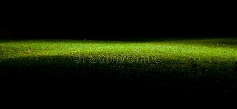 Césped verde en la noche imagen de archivo libre de regalías