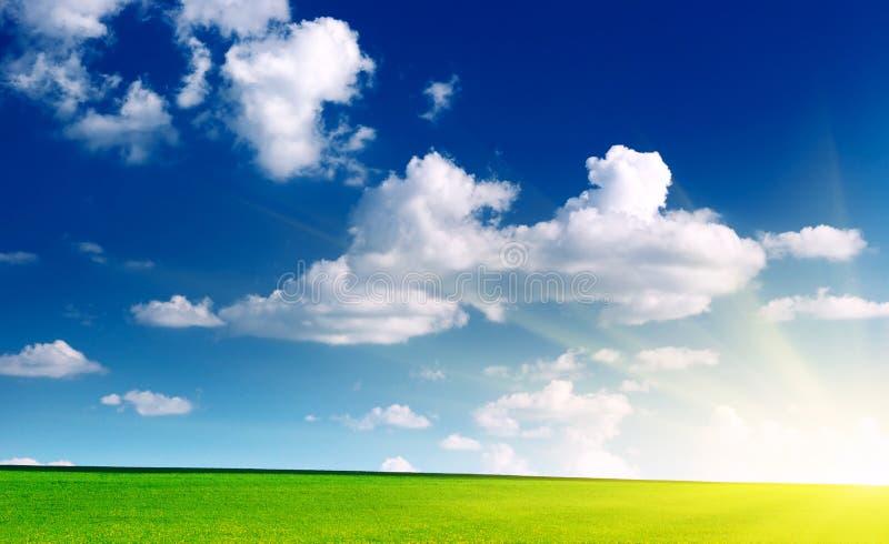 Césped y cielo nublado foto de archivo