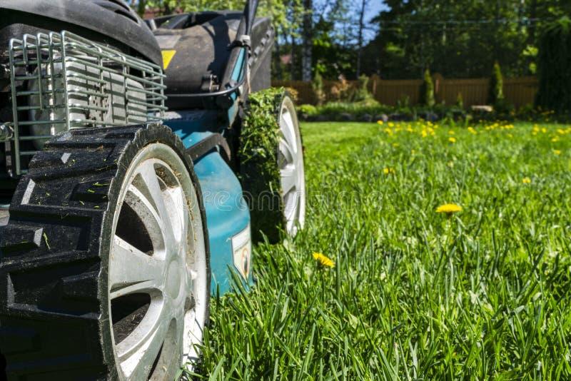 Céspedes de siega, cortacésped en la hierba verde, equipo de la hierba del cortacéspedes, herramienta de siega del trabajo del cu fotos de archivo libres de regalías