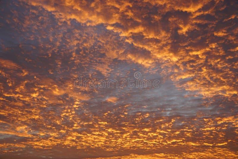 Céu alaranjado colorido dramático da cor com as nuvens durante o por do sol foto de stock