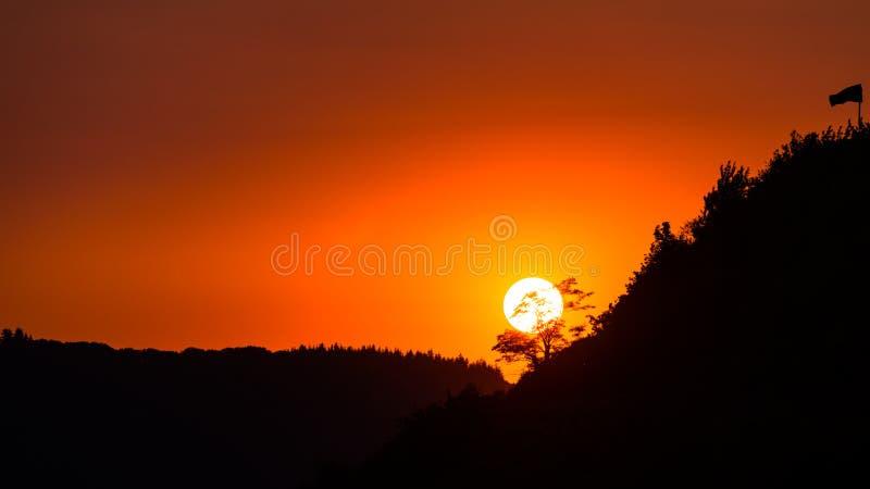 Céu amarelo bonito antes do por do sol sobre a árvore da sombra em adegas dos montes com as únicas bandeiras na noite fotos de stock