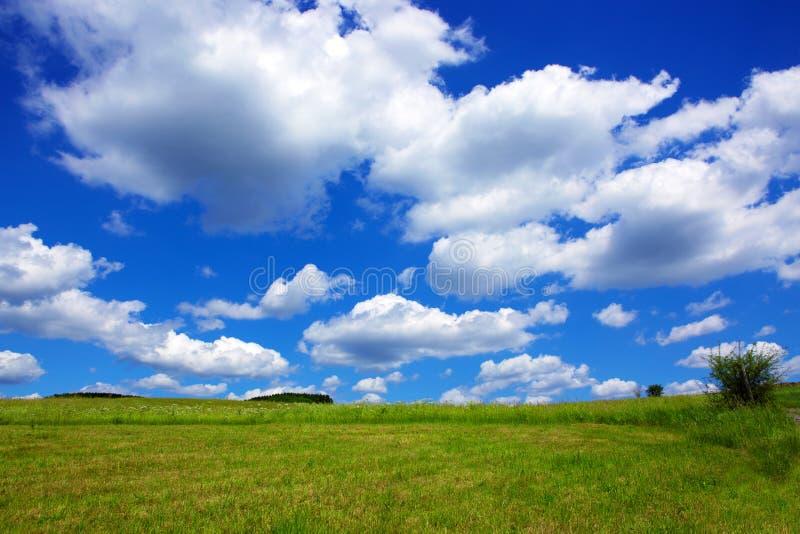 Céu azul com nuvens e campo verde imagem de stock royalty free