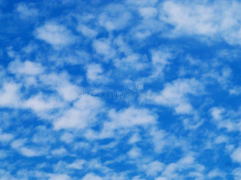 Céu azul com nuvens macias fotos de stock royalty free