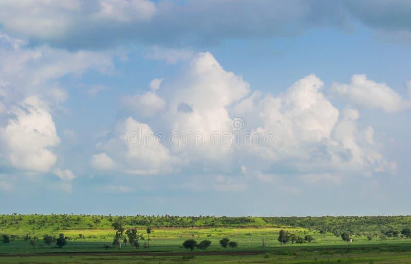 Céu azul das nuvens e campos verdes imagens de stock