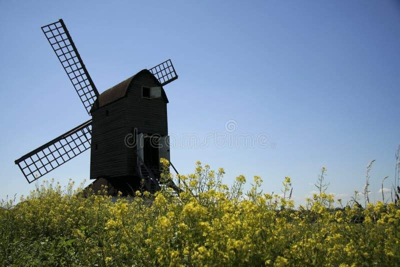 Céu azul do campo inglês do moinho de vento de Pitstone fotografia de stock royalty free