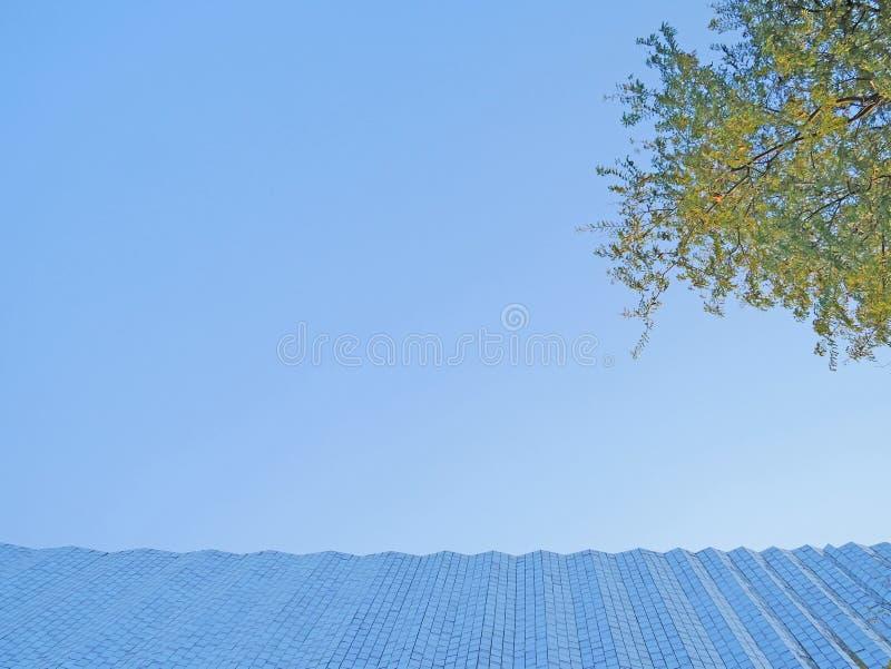 Céu azul e fundo fotos de stock
