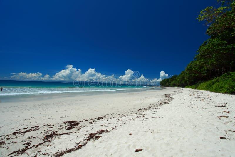 Céu azul e nuvens na ilha de Havelock. Ilhas de Andaman, Índia imagem de stock royalty free