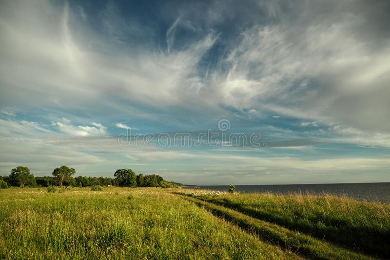 Céu azul e nuvens observando sobre o campo verde fotografia de stock royalty free