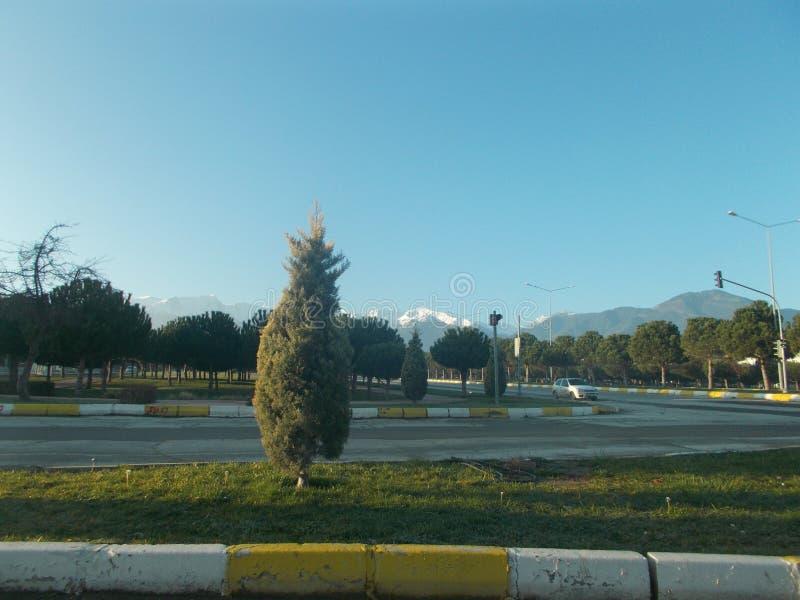 Céu azul, montanhas e árvores imagem de stock