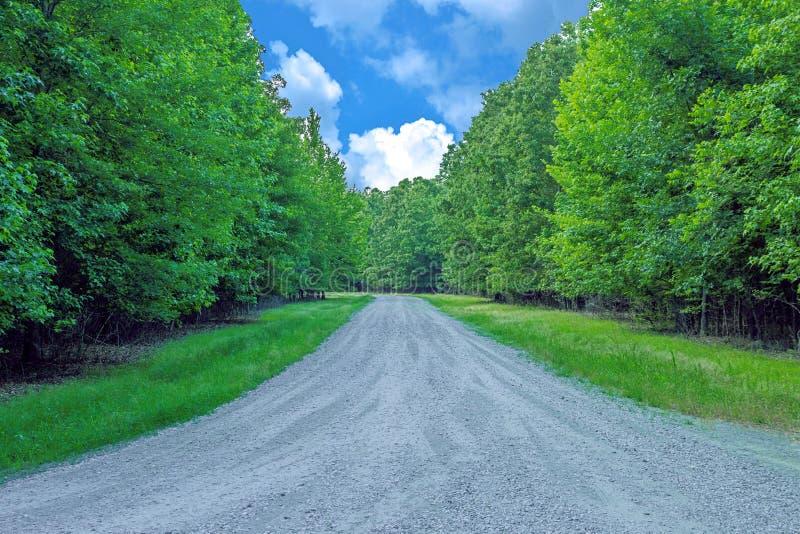 Céu azul profundo coberto pelas nuvens de cúmulo brancas sobre uma estrada para enegrecer o lago bayou imagem de stock royalty free