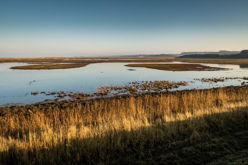Céu azul sobre a praia em Cromer, Norfolk foto de stock royalty free
