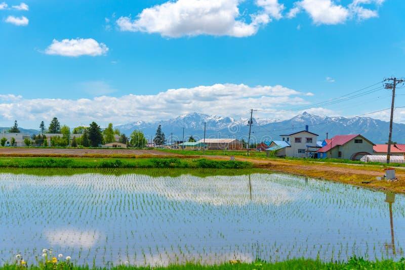 Céu azul vasto e nuvens brancas sobre o campo da terra da almofada em um dia ensolarado bonito na primavera Paisagem rural panor? fotos de stock