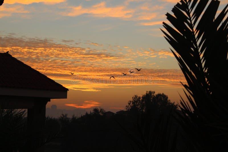 Céu bonito do nascer do sol do por do sol imagens de stock royalty free
