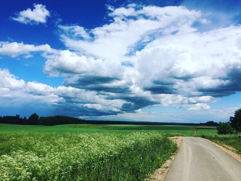 Céu bonito do verão fotografia de stock