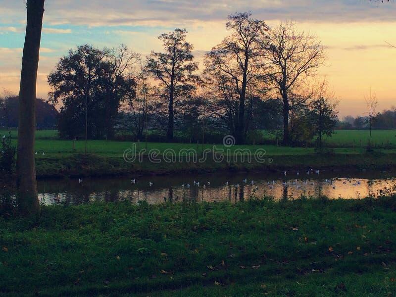 Céu bonito em um amanhecer fotografia de stock