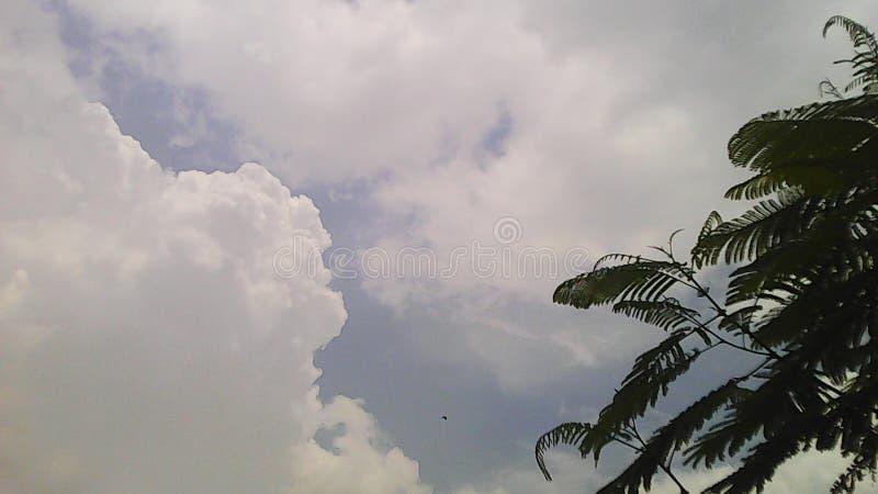 Céu branco imagem de stock