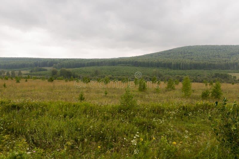 Céu cinzento com muitas nuvens no céu adiantado do outono sobre campos verdes, árvores, florestas e montanhas enormes Muitas erva foto de stock