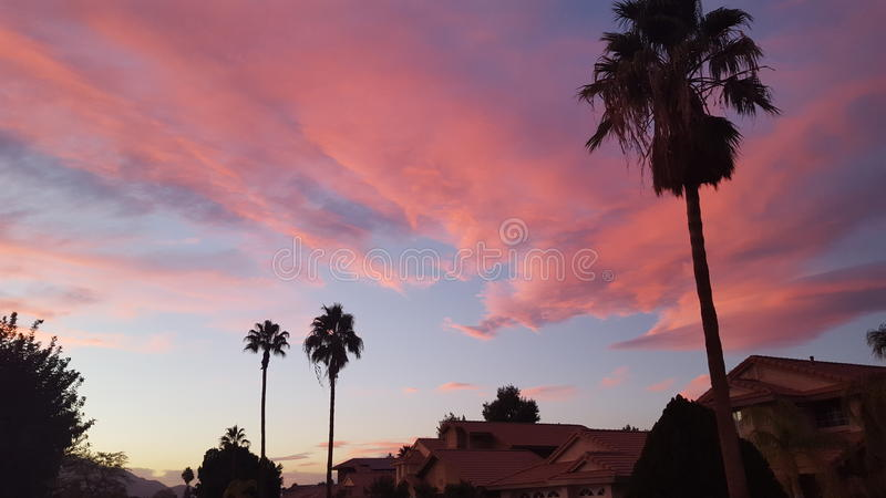 Céu cor-de-rosa fotografia de stock royalty free