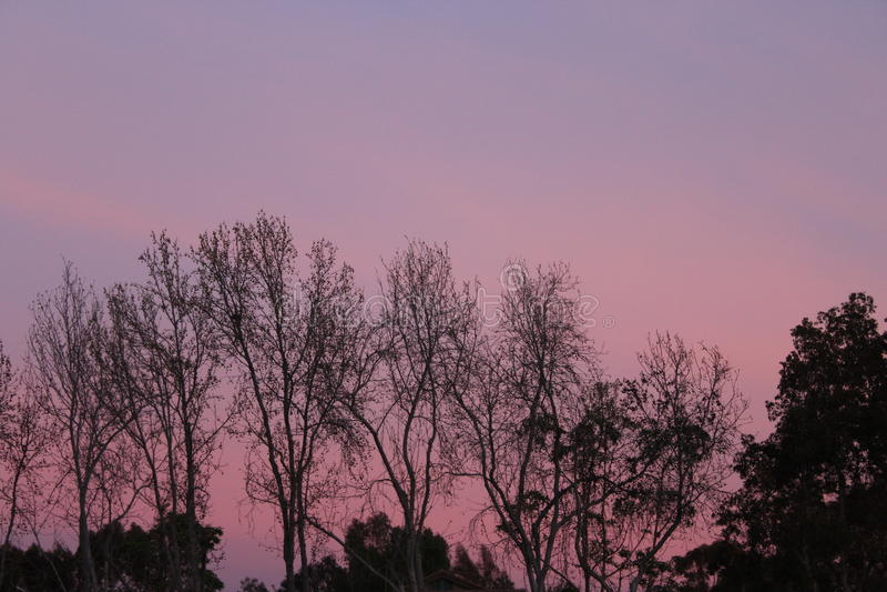 Céu cor-de-rosa e roxo imagem de stock