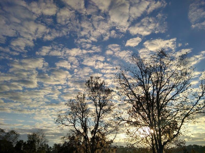 Céu da manhã imagem de stock
