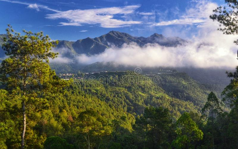 Céu da manhã em Indonésia fotografia de stock