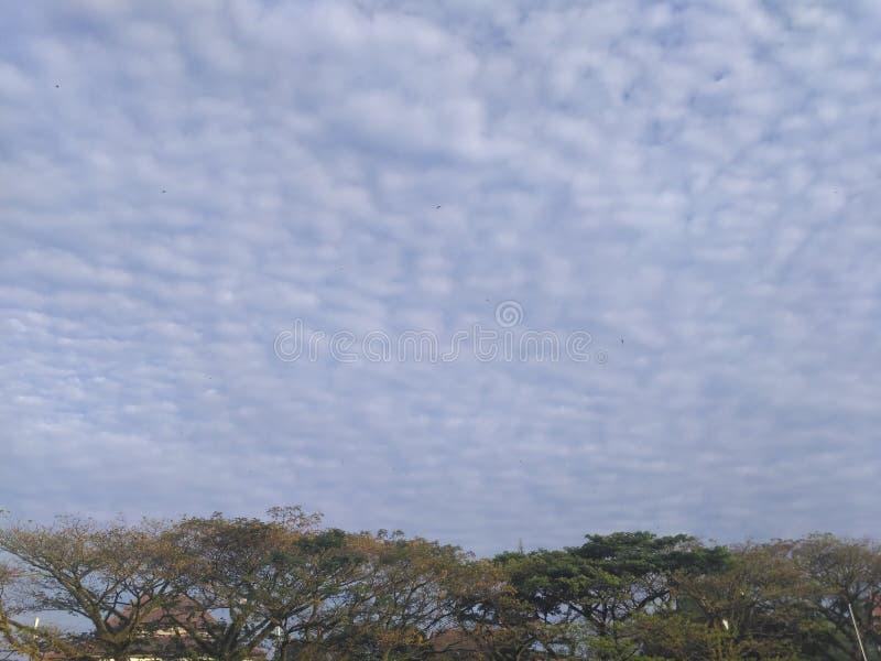 Céu da nuvem foto de stock