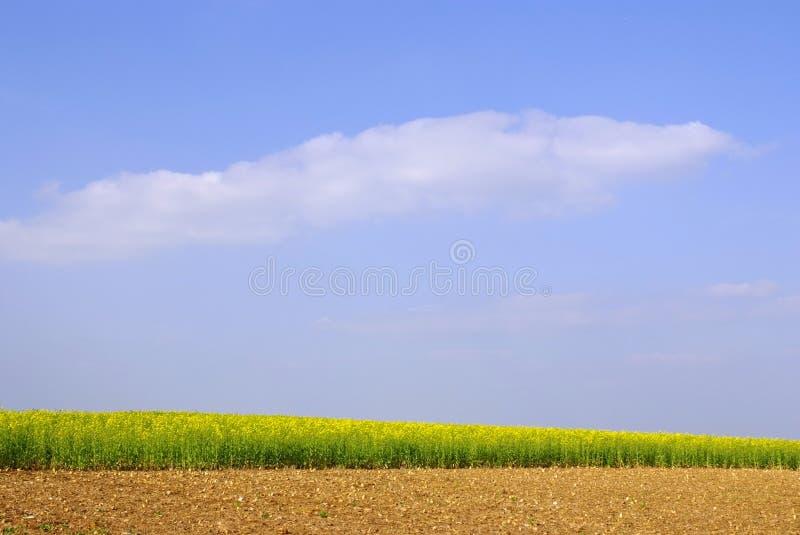 Céu do campo fotos de stock