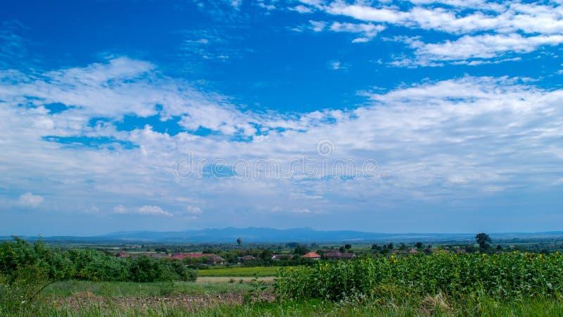 Céu do verão, dia perfeito, tiro CRU, amigos, dia nebuloso, divertimento, paixão fotografia de stock