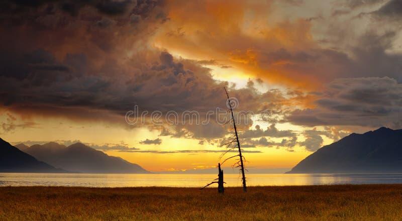 Céu dramático da noite fotografia de stock