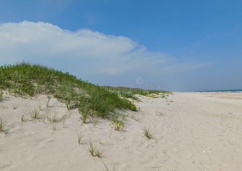 Céu e praia fotografia de stock royalty free