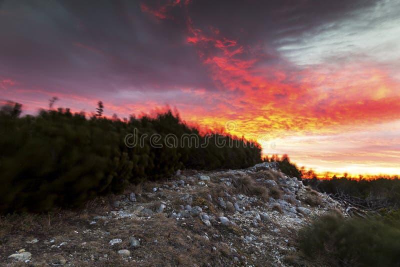 Céu espetacular em uma manhã tormentoso fotos de stock royalty free