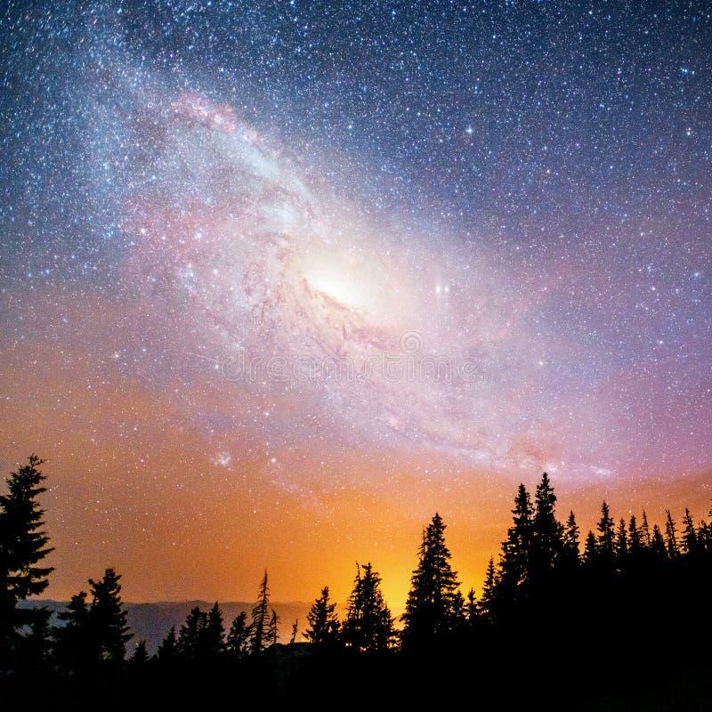 Céu estrelado fantástico e a Via Látea acima dos pináculos dos pinhos Cortesia da NASA fotos de stock royalty free