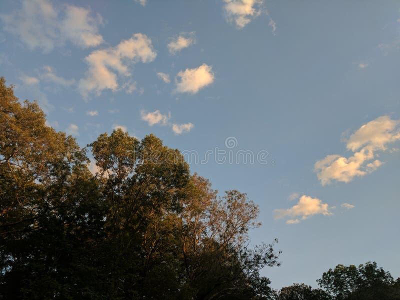 Céu iluminado por do sol fotografia de stock