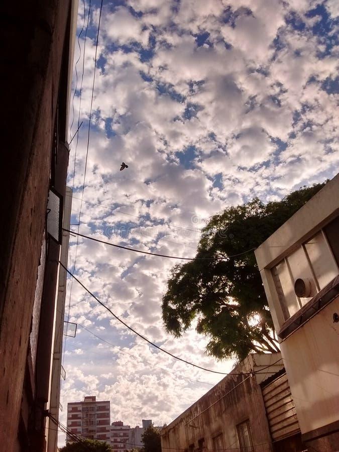Céu nebuloso na cidade fotografia de stock