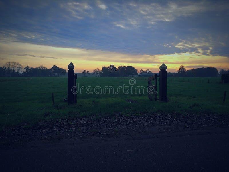 Céu no amanhecer fotos de stock