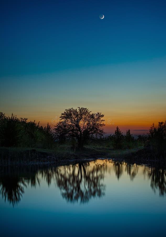Céu noturno com a lua após o por do sol Paisagem com uma árvore pelo lago fotografia de stock