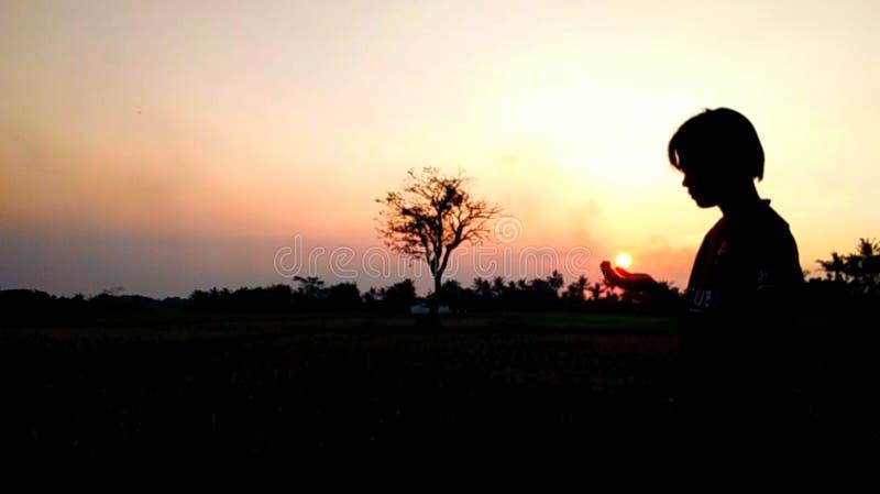 Céu noturno do por do sol da luz da natureza vermelho na árvore ilustração stock