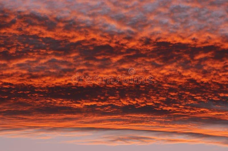 Céu rosado foto de stock