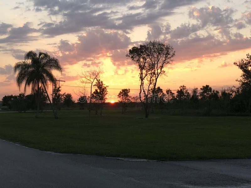 Céu sul de Florida nos marismas fotos de stock royalty free
