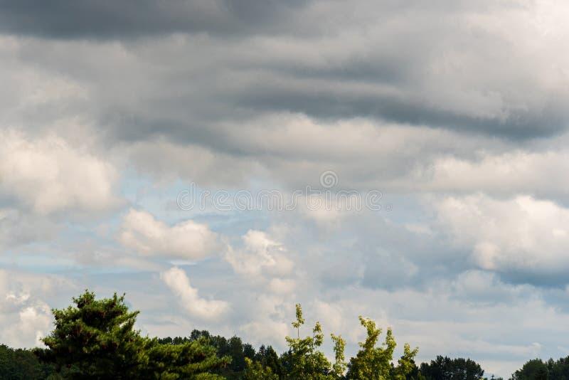 Céu tormentoso sobre copas de árvore, nuvens em várias máscaras do cinza com uma sugestão do céu azul imagem de stock
