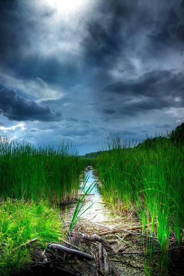 Céu tormentoso sobre pantanais iluminados fotos de stock