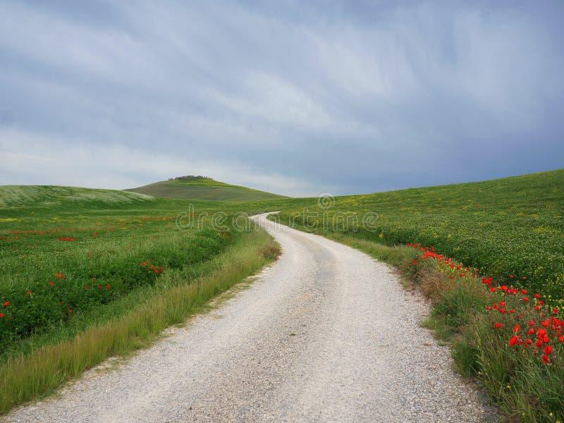 Céus escuros sobre montes de uma estrada na primavera perto de Pienza imagem de stock royalty free