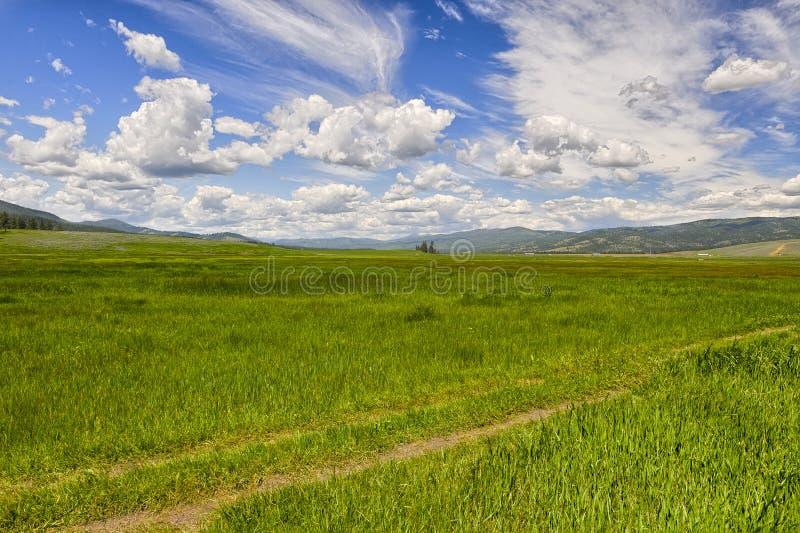 Céus grandes, Montana fotos de stock royalty free