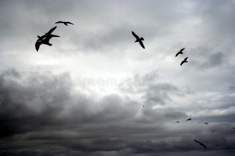 Céus nebulosos em Whitby fotografia de stock royalty free