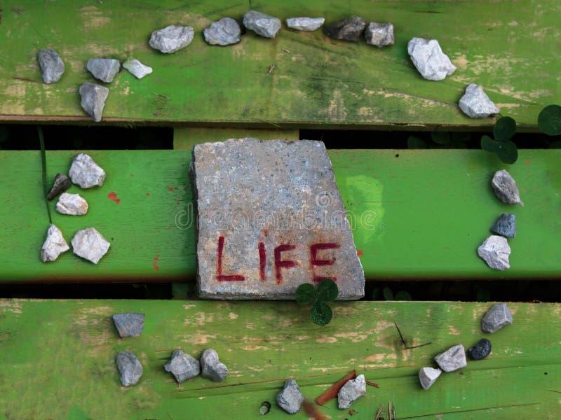 Círculo da vida: Conceito abstrato imagens de stock royalty free