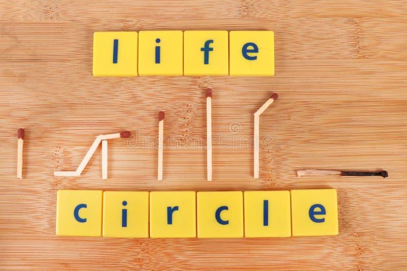 Círculo de la vida fotos de archivo libres de regalías