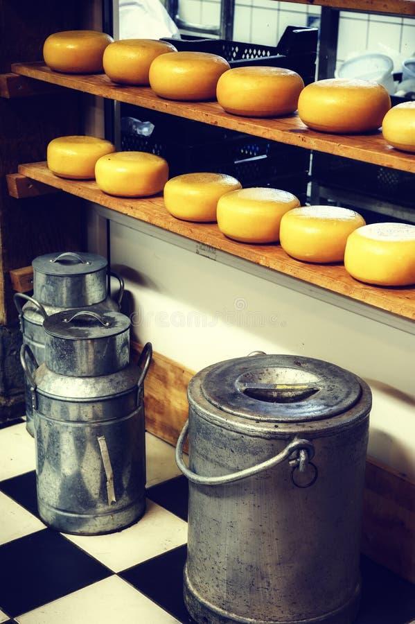 Círculos do queijo e latas do leite na fábrica pequena da leiteria foto de stock