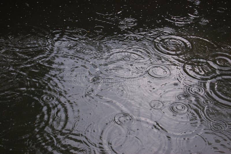 Círculos en el agua de las gotas de la lluvia foto de archivo libre de regalías