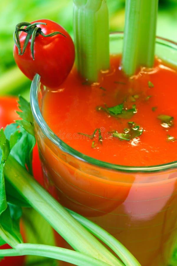 Cóctel de la verdura de la lechería fotografía de archivo