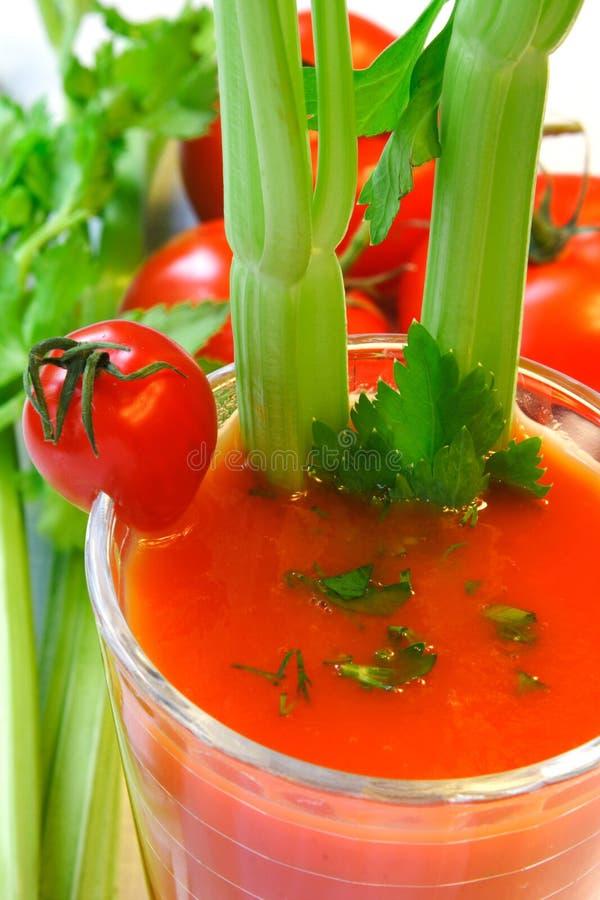 Cóctel de la verdura del tomate foto de archivo libre de regalías